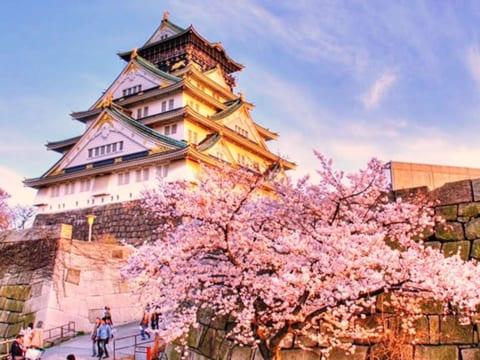 Học Bổng Du Học Nhật Bản: Cơ Hội Cho Sinh Viên Học Điều Dưỡng