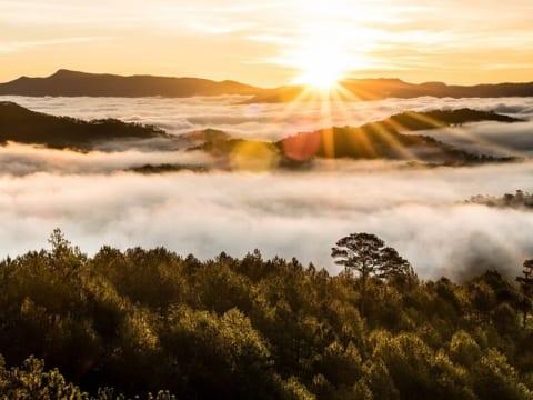 Gợi ý 9 cảnh đẹp Đà Lạt giúp chuyến đi của bạn thêm tuyệt vời