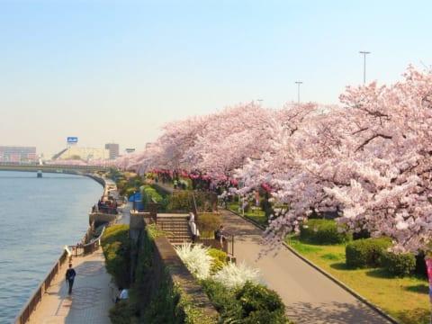 Có thể không nếu xin visa du học Nhật Bản khi đã lập gia đình?